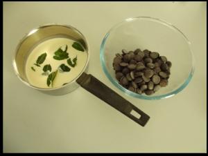 tarte chocolat menthe