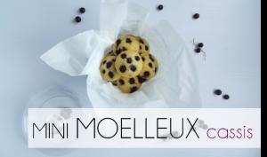 min_moel_cass_menu21