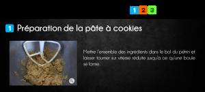 cook_stic_3