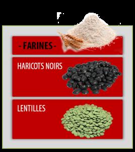 FARINESs