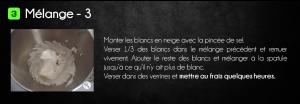 mous_choc_poir_5v2
