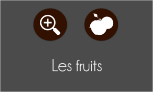 zoom_fruits
