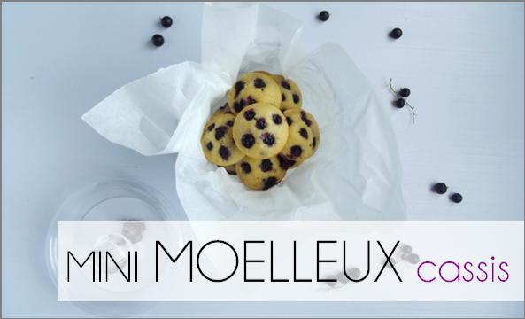 Mini Moelleux Cassis (-39% de calories)