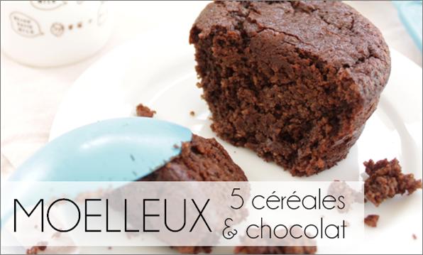 Moelleux chocolat / 5 céréales (-58% de calories)