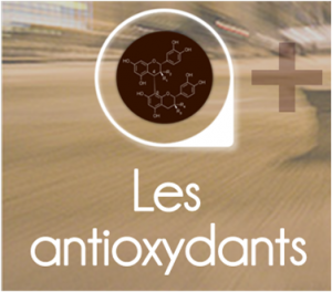 PageLines- Zantioxy.png