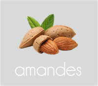PageLines- amandes.png