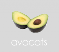 PageLines- avocats.png
