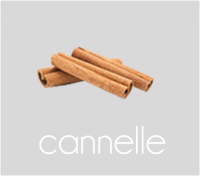 PageLines- cannelle.png