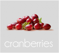 PageLines- cranberries.png