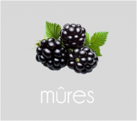 PageLines- mures.png