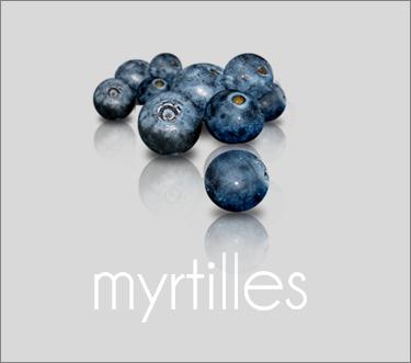myrtilles