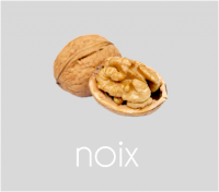 PageLines- noix.png