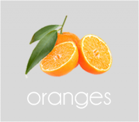 PageLines- oranges.png