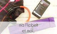 PageLines- flipbelt.png