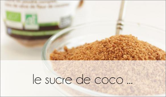 ZOOM : le sucre de coco
