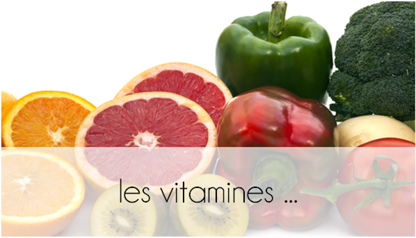 ZOOM : les vitamines