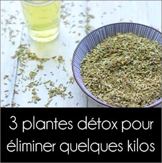 3_plantes