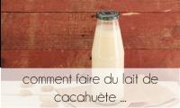 PageLines- com_fair_lait_cacah.png